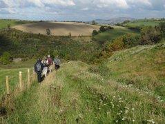 Bishop's Castle, September 2015 - Descending besides Offa's Dyke